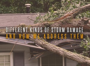 Different Kinds of Storm Damage and How We Address Them